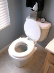 Final ring left.  New squishy toilet seat so Chip doesn't slip off.  Toilet seat is down now so he gets used to it.